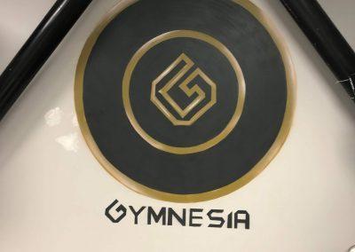 Travaux Gymnesia